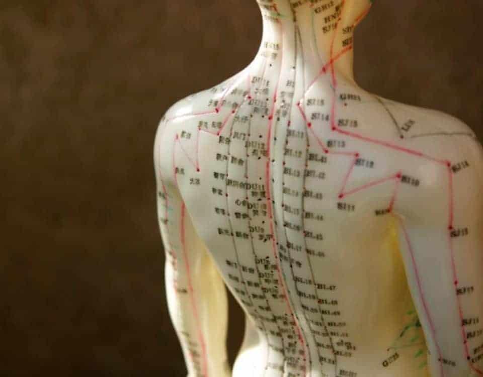acupuntura boneco acupuntura